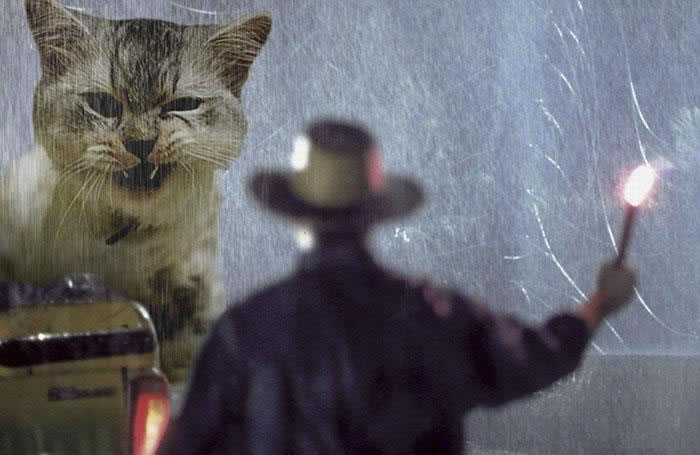 Guy Replaces Jurassic Park Dinosaurs With Cats, The Results Are Awesome